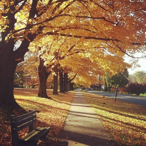 Ridgefield CT on a beautiful fall day. & 17 best Sweet Home Ridgefield CT images on Pinterest | Ridgefield ...