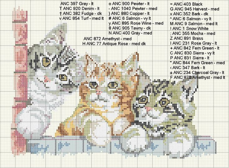 3 tabby kittens on a brick wall grey, orange, brown