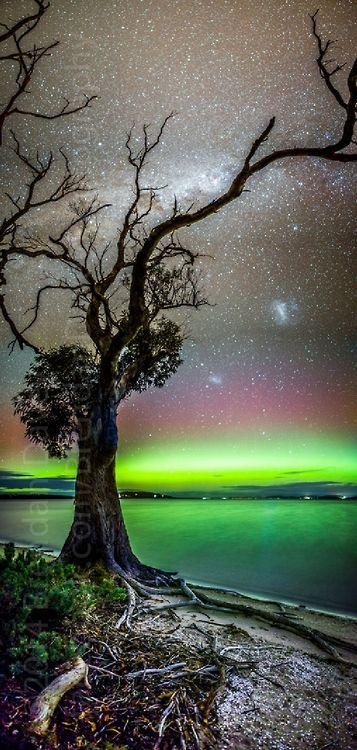 Aurora from Tasmania by Brendan Davey