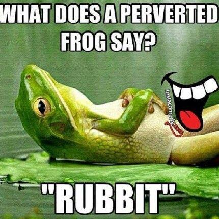Rubbitt