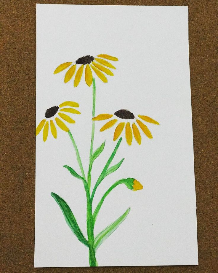 The pretty sunflowers!!    . Find our sketchbooks on Etsy.. shop link on the profile page!! #sunflower #sunflowers #drawing #drawings #drawingaday #drawsomething #paint #painting #watercolorart #watercolor #springtime #watercolours #flowers #handpainted #handmade #handdrawn #etsysellersofinstagram #etsyusa #shopsmallbusiness #smallbusinessowner #etsy  #sketchbooks #sketchbook #sketchbookpro #paintingoftheday #paintingart #aarinshandmade #staycreative