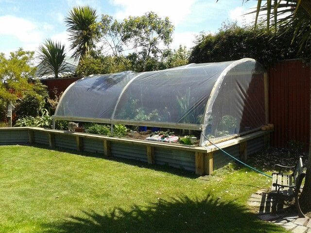 Greenhouse made from a trampoline frame.