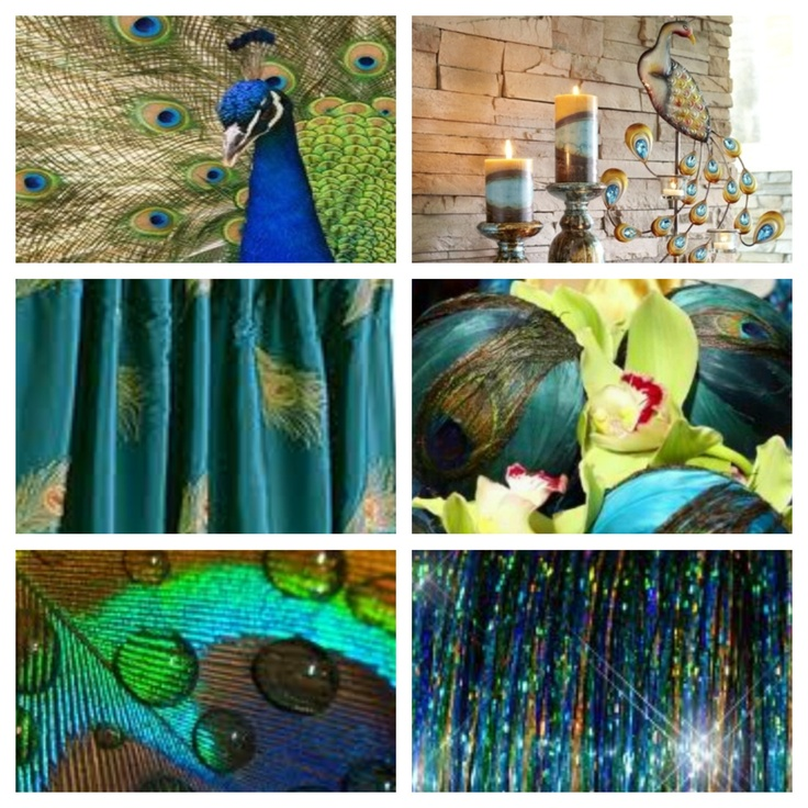inspiration for peacock themed room peacocks pinterest