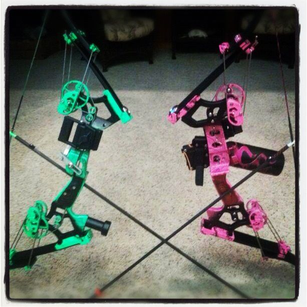 Bowfishing american eagle bows bowfishing for Green top hunting and fishing