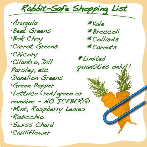here is a shopping list which has a wider range of food that your rabbit can eat that it might not get.