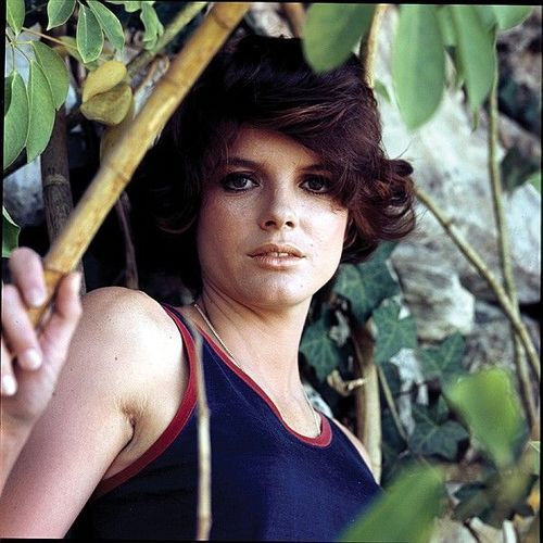 Katharine Ross: 10+ Handpicked Ideas To Discover In