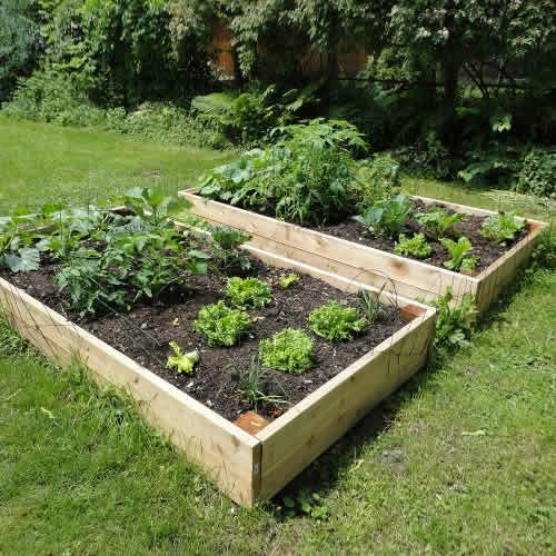 Raised Garden Beds - 8ft x 4ft Tanalised Timber  INformation on building higher beds and amount of soi to fill. also cheap gardening tools