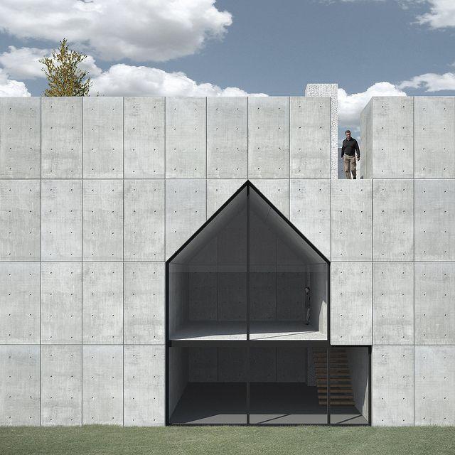 Negative house concept