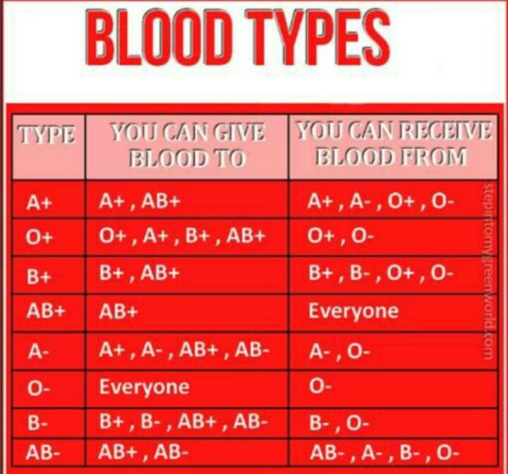 Blood Types                                                                                                                                                                                 More