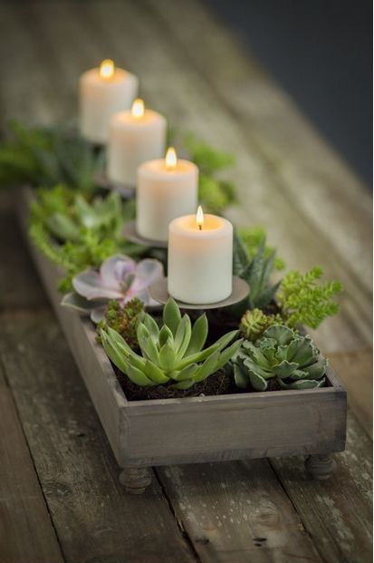 Kerzen und Sukkulenten ...
