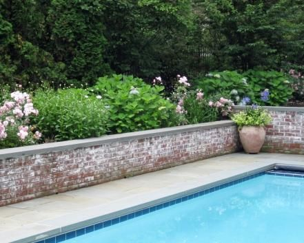 Cottage garden and low wall adjacent pool
