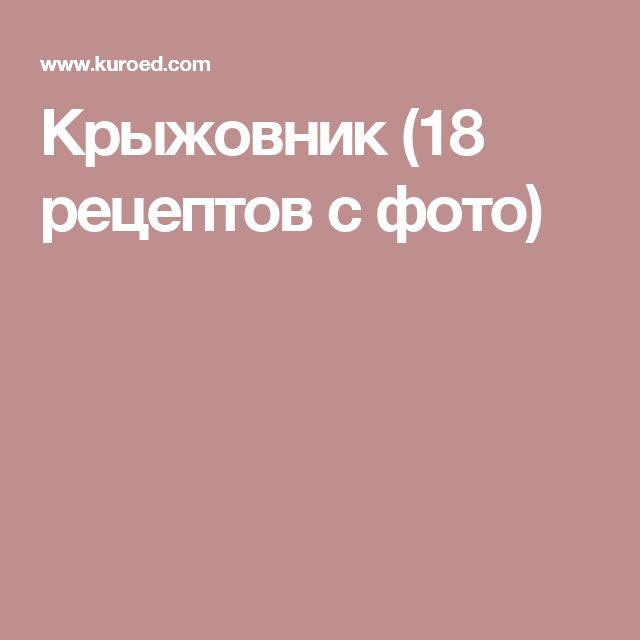 Крыжовник (18 рецептов с фото)