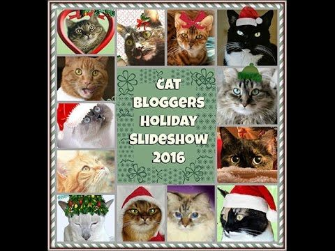 Cat Bloggers Holiday Slideshow 2016 Made by Peaches & Paprika