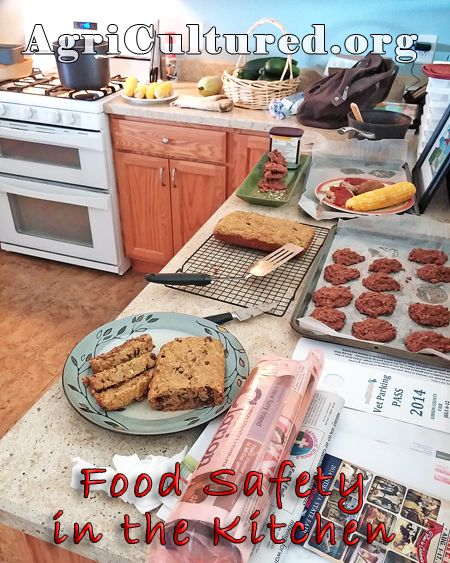 9 best images about cooking merit badge class on pinterest for 6 kitchen accidents