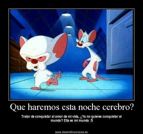 Conquistar al amor de mi vida...: 90S Kids, Cartoon, 90Skid, Tv Quotes, Childhood, The Brain, Pinky, The World, 90 S Kids