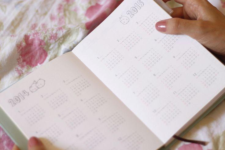 Organização: Como usar um planner