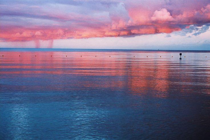 https://flic.kr/p/oHbubQ | Turkey Point Beach | Nikon FE2 Nikkor Micro 55mm f2.8 AGFA Ultra 100