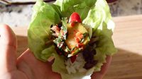 Bulgogi (Korean BBQ) : Bulgogi Recipe