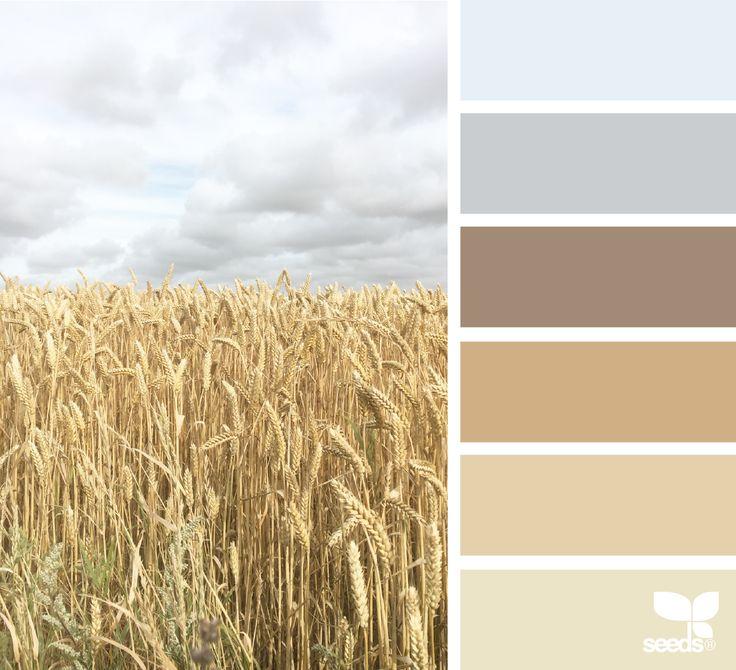 { nature tones } image via: @piensaar  #color #palette #colorpalette #pallet #colour #colourpalette #design #seeds #designseeds