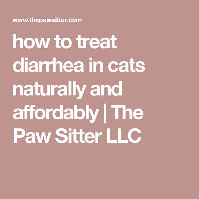 Natural Cures For Diarrhea In Cats