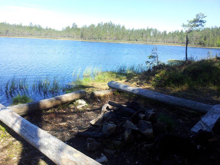 """Jøstjernet. Tjennrunden. Mosjømarka. Løten. Utenfor gapahuken """"Sverres fiskeplass"""". http://ut.no/kart/?lat=60.8435766258695&lng=11.4126638200969&zoom=15&ao=2.4410"""