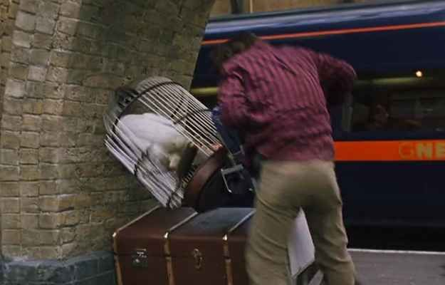 Cut to Kings Cross, where Harry attempts to murder Hedwig's stunt double in a high-speed trolley accident.