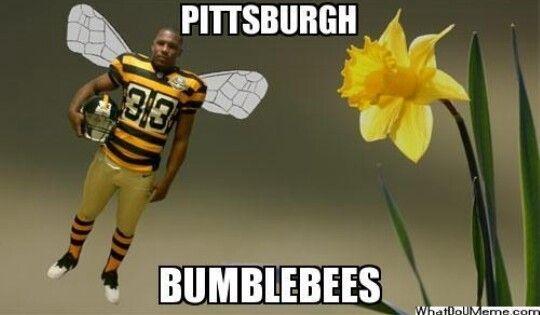 Pittsburgh Jokes | Funny Humor by Joke Buddha