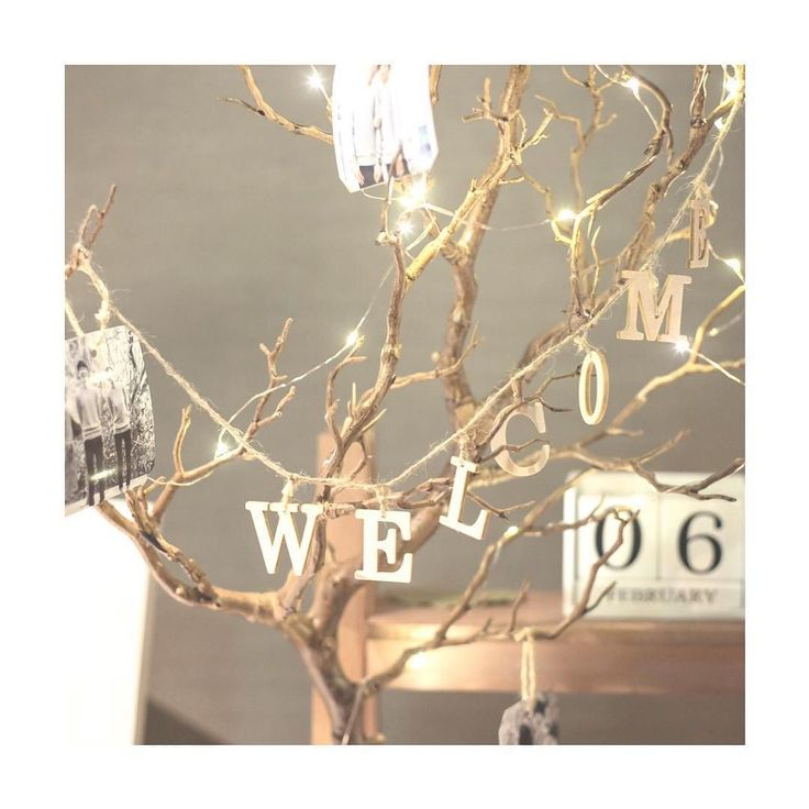 . wedding report 30-3 . ウェルカムツリーにはネットで見つけたマンザニータを使いましたあんまりウェルカムスペースに自分達の写真を飾るのは恥ずかしかったのでツリーに吊るしたのは3つだけです後はフェアリーライトとwelcomeガーランドで誤魔化しました. . #今日は連投してしまってごめんなさい . #プレ花嫁 #プレ花嫁卒業 #卒花 #ナチュラルウェディング #ウェルカムスペース #ウェルカムアイテム #マンザニータ #ウェルカムツリー #photoby_hassy #maaki_26wd #ウェディングレポ #結婚式レポート by maaaaki_s