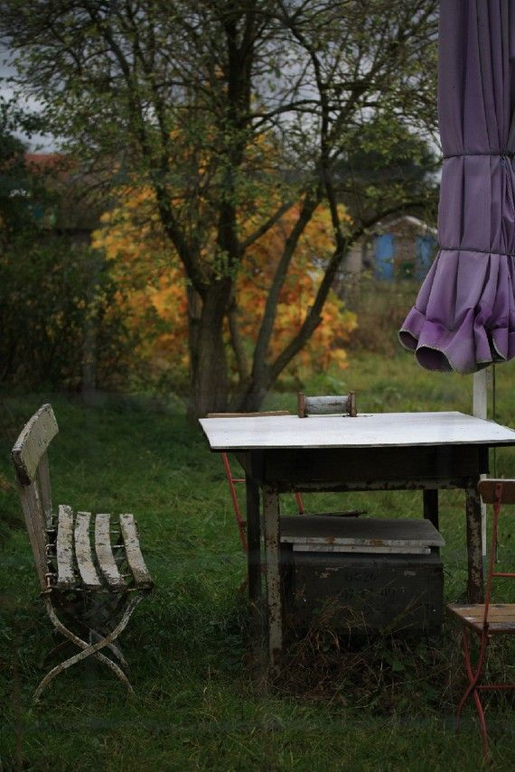 BOGO Sale Grey Gardens In The Fall Signed Fine by Augenblickphoto, €22.00
