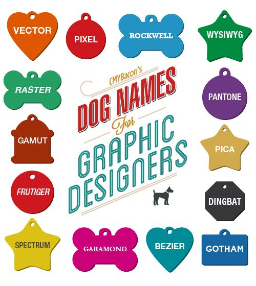 Graphic design-related dog names.