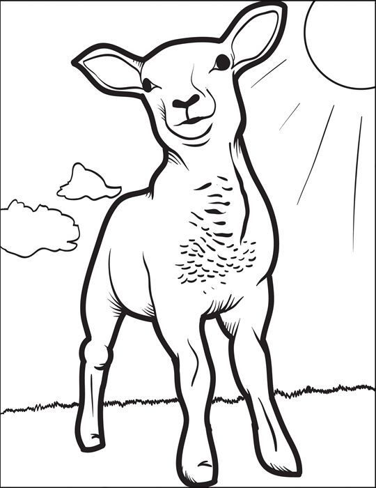110 Best Coloring Pages For Kids Images On Pinterest