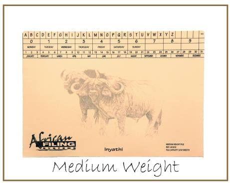 Medium Weight File - Buffalo (Inyathi) AFMWF200 - capacity 200 sheets