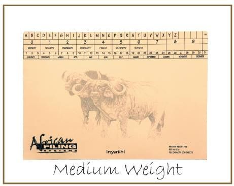 Medium Weight File - Buffalo (Inyathi) AFMWF200 - capacity 200 sheets