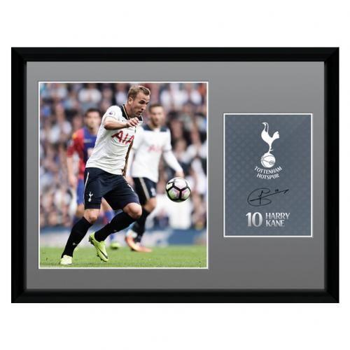 Tottenham Hotspur FC Picture Kane 16 x 12