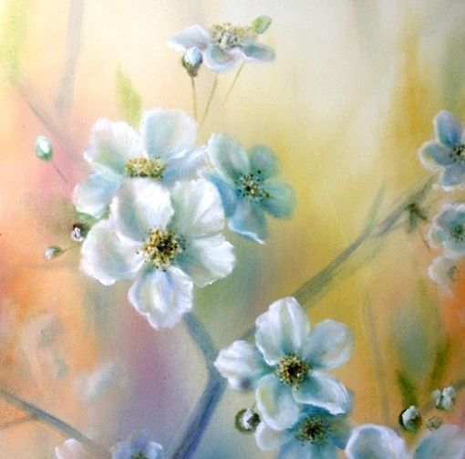 Spring flowers by Lidia Olbrycht