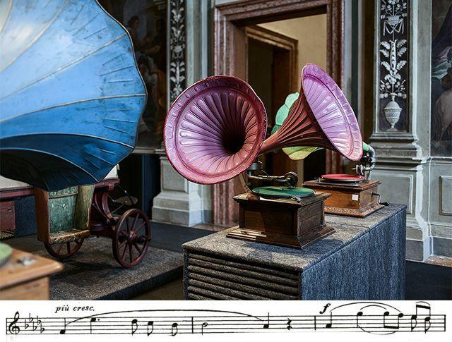 Все детали венецианской экспозиции
