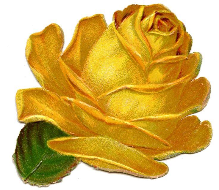*The Graphics Fairy LLC*: Victorian Scraps - Yellow Rose