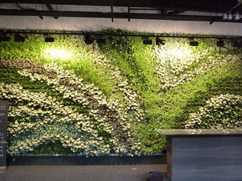 20 best Vertical gardens - Biotecture images on Pinterest   Vertical ...