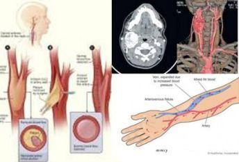 Pentru a fi la curent cu noutatile, accesati http://www.spitalulsfconstantin.ro