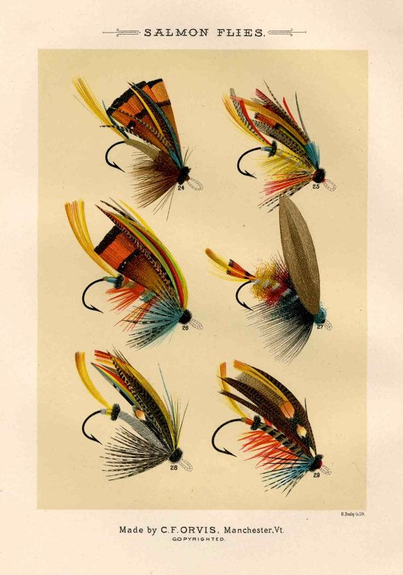 46 best vintage fishing posters images on pinterest for The fly fishing shop