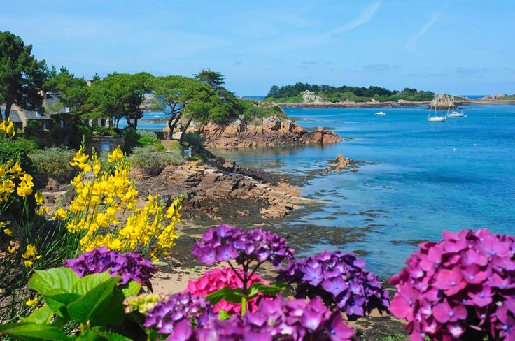 Île de Bréhat - Côtes d'Armor <3                                                                                                                                                                                 Plus