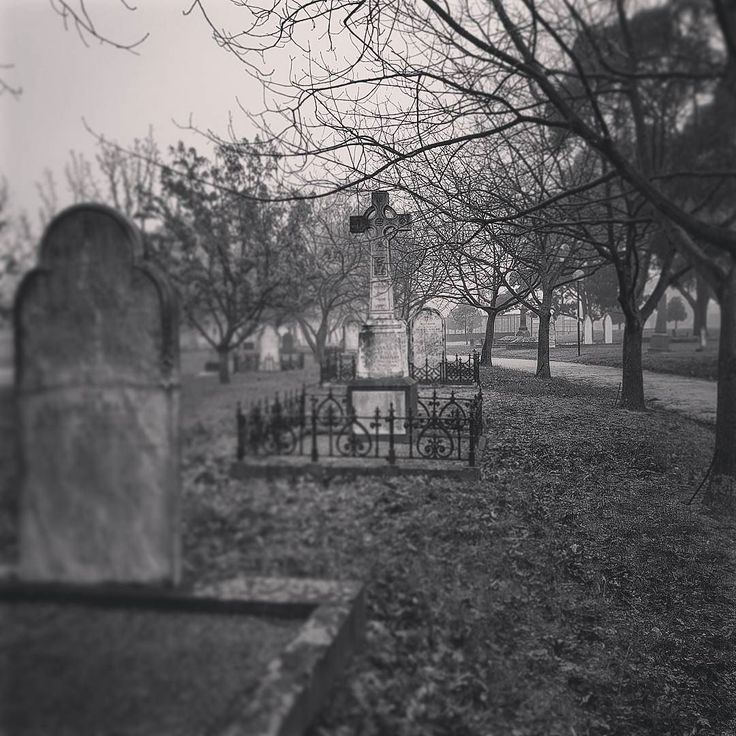 Such a foggy Melbourne morning quite a lovely surprise. Received some amazing news with my photography can't wait to share it with you all. Stay tuned top of the morning to ya. Xx #photography #bnw #oakleigh #monochrome #cemetery #fog #foggymorning #photoofday