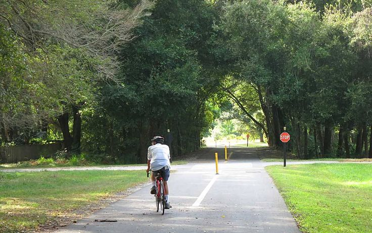 FL: Central - West Orange trail passes through Winter Garden. Several sections of the trail pass through a tree canopy.