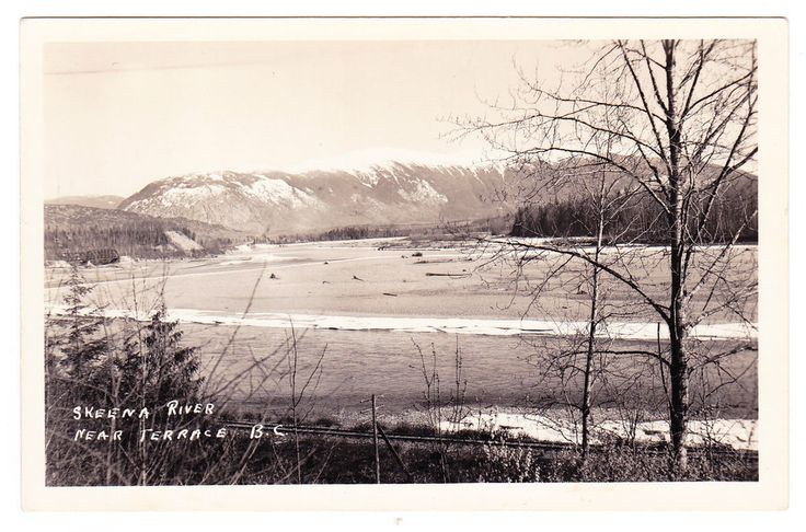 BC – TERRACE, Skeena River, Rail Line and Bridge c.1954 RPPC