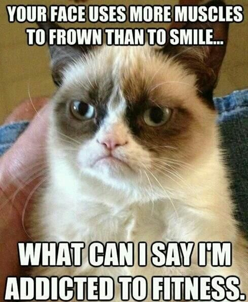 Grumpy Cat - What can I say.... I'm addicted to fitness