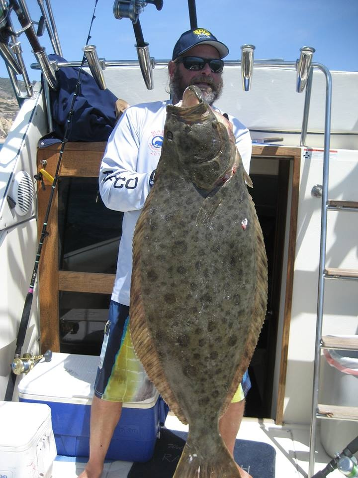 285 best fishes ocean images on pinterest fishing for California halibut fishing