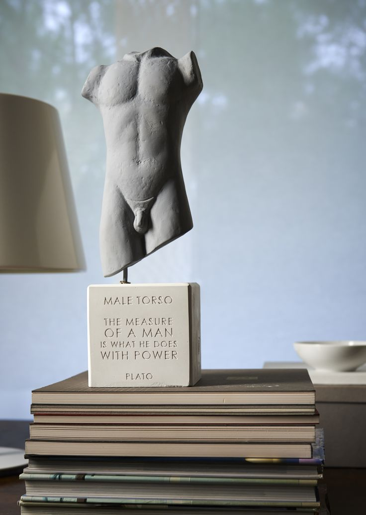 """Male torso  """"The measure of a man is what he does with power"""" - Plato"""