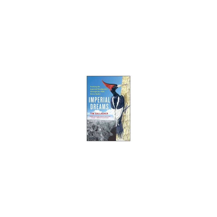 Imperial Dreams : Tracking the Imperial Woodpecker Through the Wild (Reprint) (Paperback) (Tim