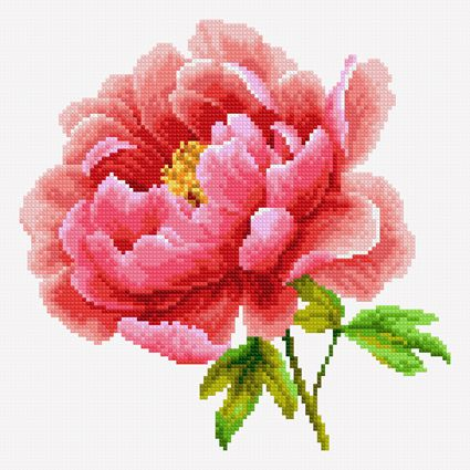 Pink peony (Free cross stitch pattern)