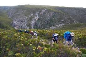 de hoop whale hiking trail - Google Search